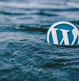 https://thewebtier.com/wp-content/uploads/2018/07/Top-10-Wordpress-Design-Tips-For-Non-Designers.jpg