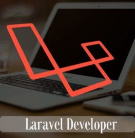 https://thewebtier.com/wp-content/uploads/2019/02/Laravel-Developer.jpg